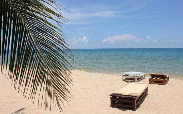 開放感のある南国のビーチ